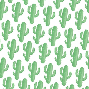 Exotics cactus plants natural pattern