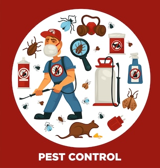 Extermination or pest control service company information poster template for sanitary domestic disinfection.