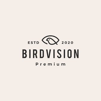Eye bird vision hipster vintage logo icon illustration