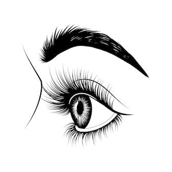 Eye in profile