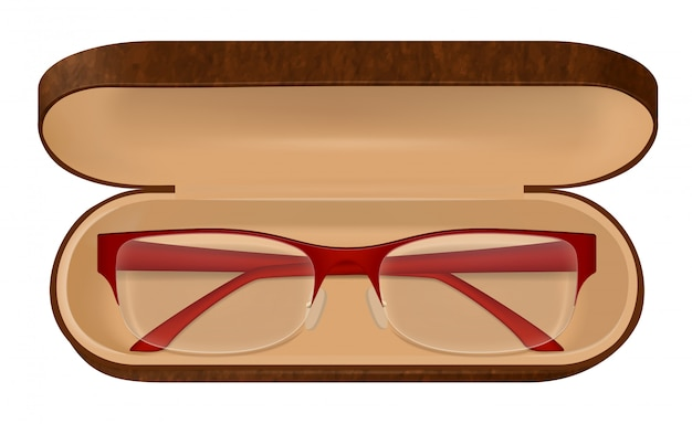 Eyeglasses in case illustration