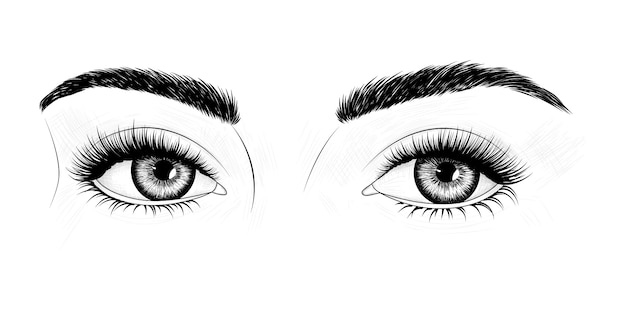 Eyes with eyebrows and long eyelashes