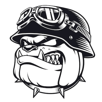Face of bulldog biker with helmet. motorcycle rider illustration. shirt graphics. on white background.