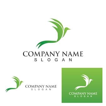 Falcon logo template vector illustration design