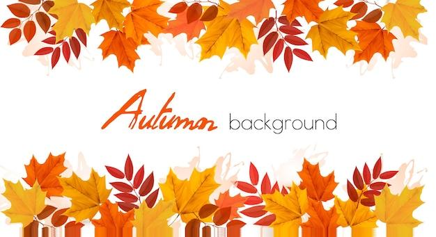 Осень осень красочные листья фон. вектор.