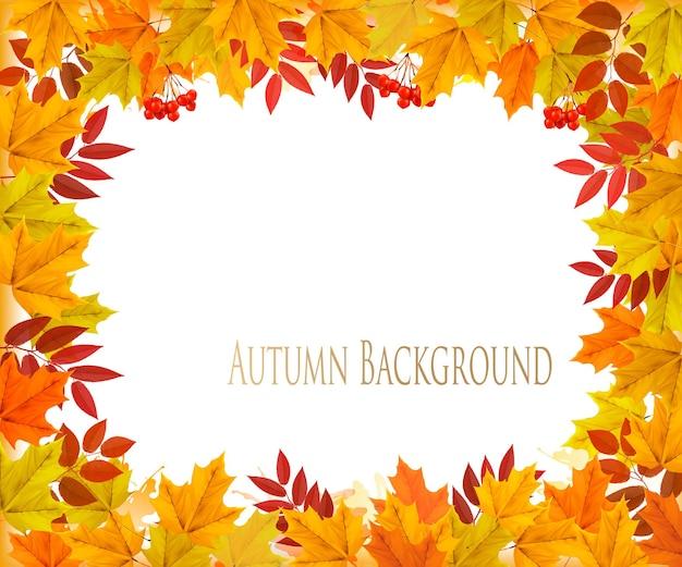 秋秋カラフルな葉の背景。ベクター。