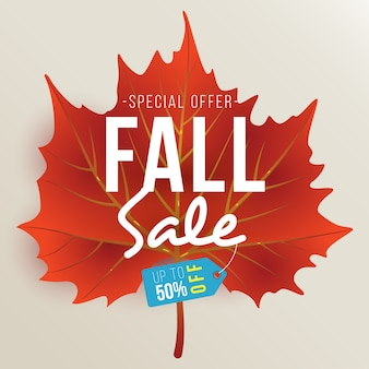 Fall Sale Design Template with Single Maroon Autumn Leaf
