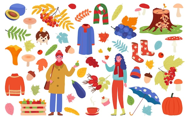 Fall season objects collection set for decoration
