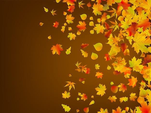 Опавшие осенние листья фон.