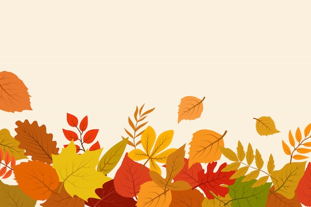 Fallen gold and red autumn leaves background