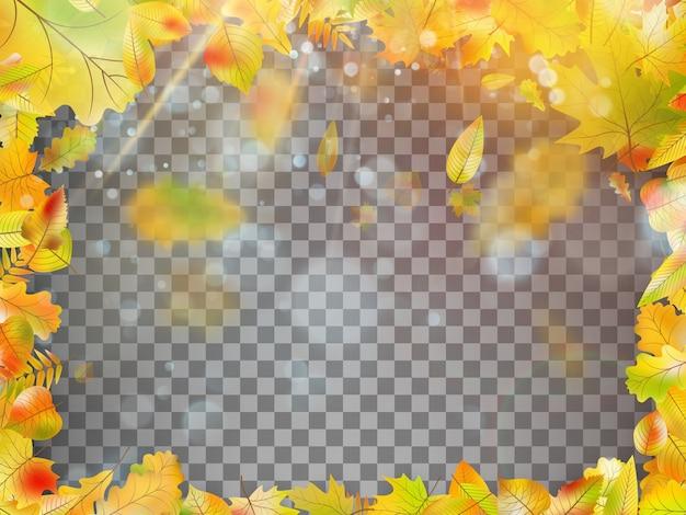 秋の落ち葉のフレーム。
