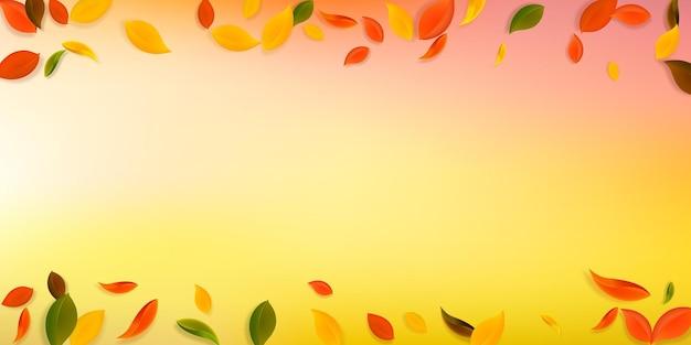 落ち葉。赤、黄、緑、茶色の混沌とした葉が飛んでいます。大胆な白い背景に降る雨のカラフルな葉。魅力的な新学期セール。