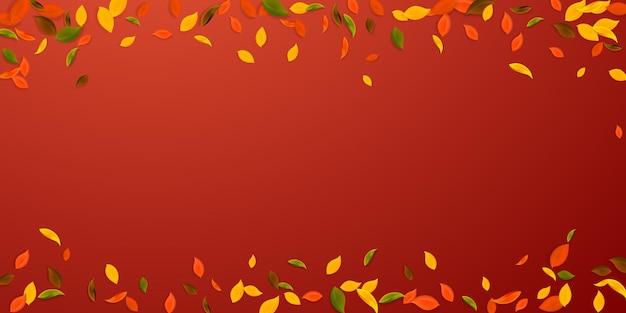 떨어지는 단풍. 빨강, 노랑, 녹색, 갈색 혼란스러운 나뭇잎이 날아갑니다. 유리한 빨간색 배경에 떨어지는 비 화려한 단풍. 뷰티어스 백투스쿨 세일.