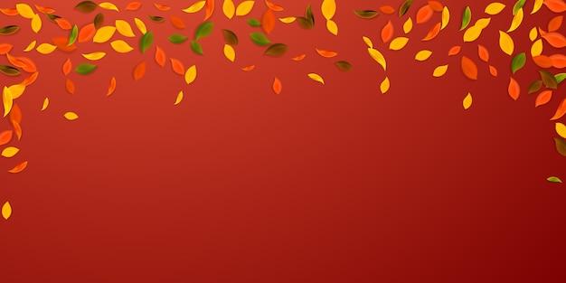 落ち葉。赤、黄、緑、茶色の混沌とした葉が飛んでいます。想像上の赤い背景に降る雨のカラフルな葉。学校に戻って美しいセール。
