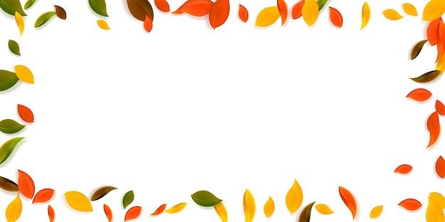 落ち葉。赤、黄、緑、茶色の混沌とした葉が飛んでいます。鮮やかな夕日の背景にカラフルな葉をフレームします。魅力的な新学期セール。