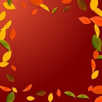 떨어지는 단풍. 빨강, 노랑, 녹색, 갈색 혼란스러운 잎이 날아갑니다. 완벽 한 빨간색 배경에 화려한 단풍 프레임. 학교 판매로 돌아가는 숨막히는.