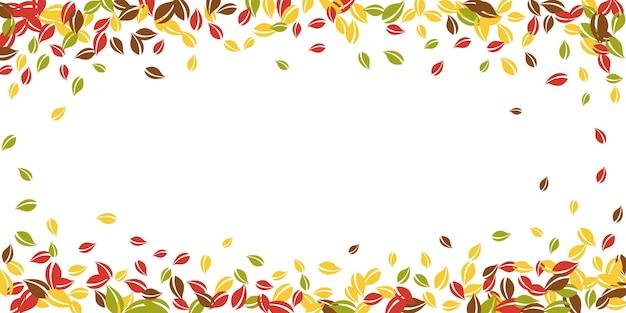 落ち葉。赤、黄、緑、茶色の混沌とした葉が飛んでいます。絶妙な白い背景の上のビネットカラフルな葉。魅力的な新学期セール。