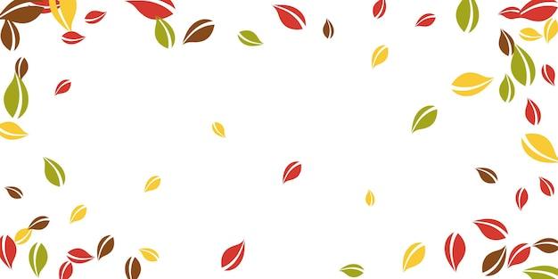 떨어지는 단풍. 빨강, 노랑, 녹색, 갈색 혼란스러운 나뭇잎이 날아갑니다. 매혹적인 흰색 바탕에 화려한 단풍입니다. 뷰티어스 백투스쿨 세일.