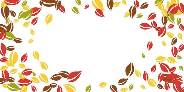 落ち葉。赤、黄、緑、茶色の混沌とした葉が飛んでいます。対称的な白い背景にビネットのカラフルな葉。学校に戻って美しいセール。