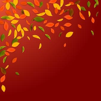 Падающие осенние листья. красные, желтые, зеленые, коричневые хаотичные листья летают.