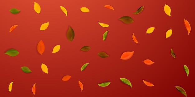 落ち葉。赤、黄、緑、茶色のきちんとした葉が飛んでいます。興味深い赤い背景に降る雨のカラフルな葉。学校のセールに戻って魅了します。
