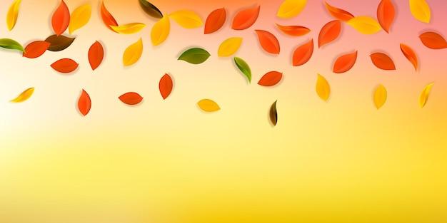 落ち葉。赤、黄、緑、茶色のきちんとした葉が飛んでいます。まともな白い背景のグラデーションのカラフルな葉。魅力的な新学期セール。