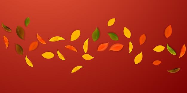 Падающие осенние листья. красные, желтые, зеленые, коричневые аккуратные листочки летят.
