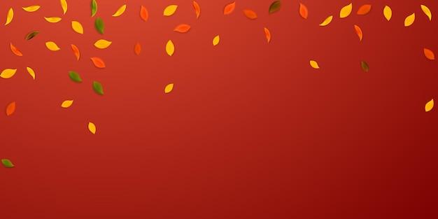 落ち葉。赤、黄、緑、茶色のランダムな葉が飛んでいます。ポジティブな赤い背景に降る雨のカラフルな葉。学校のセールに戻って魅了します。