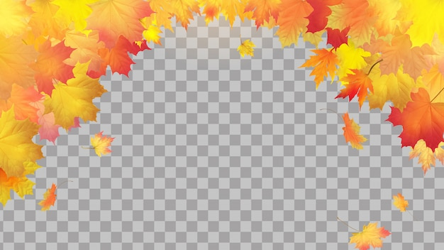 Falling autumn maple leaves on transparent background