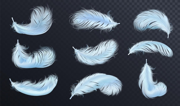 Falling blue fluffy twirled feather set, isolated goose feathers realistic style, vector 3d illustration.