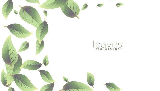 떨어지는 녹색 잎 배경 텍스트 공간