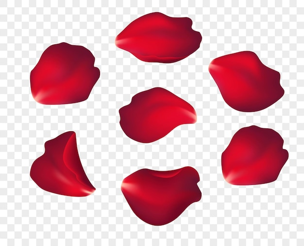 Падающие лепестки красной розы, изолированные на белом фоне. иллюстрация