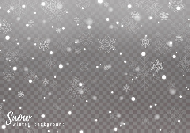 Falling snow. realistic falling snowflakes isolated on transparent background.
