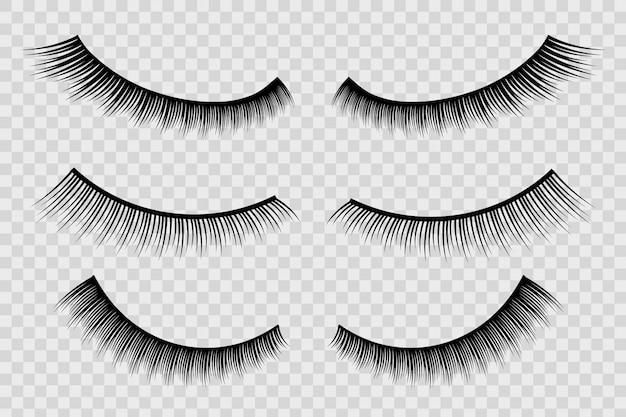 False eyelashes, female lashes, mascara lash brush