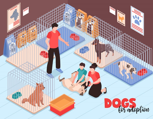 Family couple with son during communication with joyful dog in animal shelter isometric vector illustration