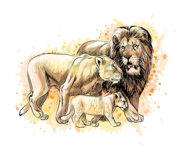 Family of lions from a splash of watercolor, hand drawn sketch.  illustration of paints