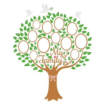 Family tree generation, genealogical tree with photo place