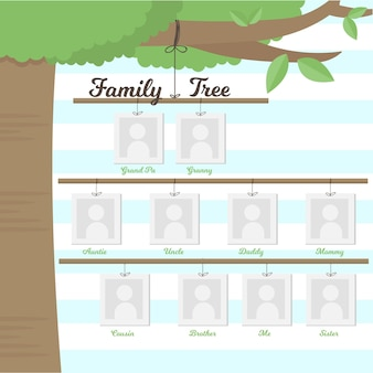 Family tree hanging on a branch