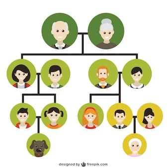 Family tree icons Free Vector