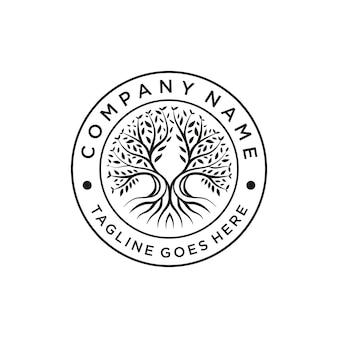 Генеалогическое древо жизни эмблема дизайн логотипа вектор