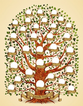 Family tree template illustration