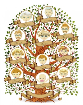 Семейное древо шаблон иллюстрации