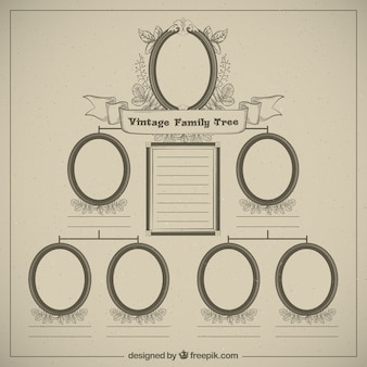 Family tree in vintage style