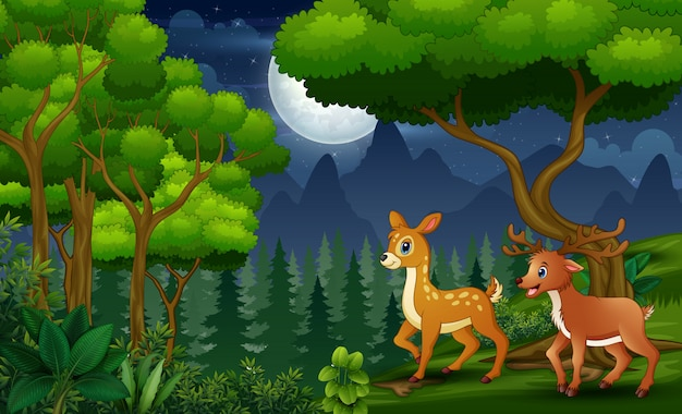 Family wild reindeer in the night forest