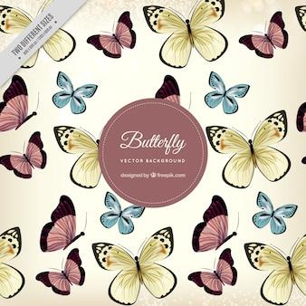 かわいい蝶の幻想的な背景