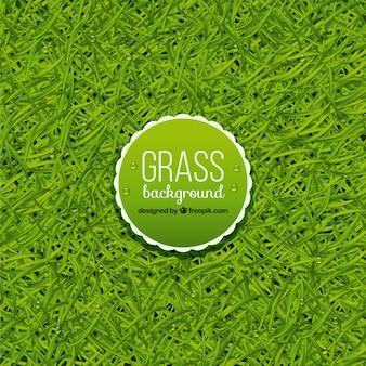 Фантастический фон травы