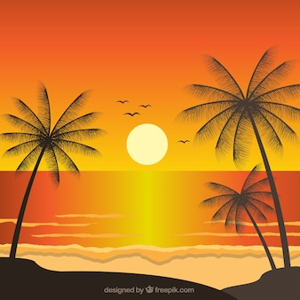 Fantastic landscape with palm trees at sunset