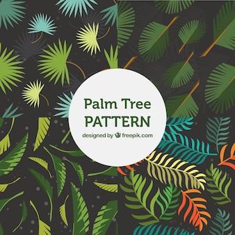パームツリーの葉の素晴らしいパターン
