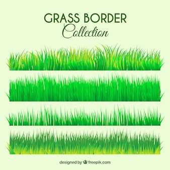 Fantastic selection of grass borders