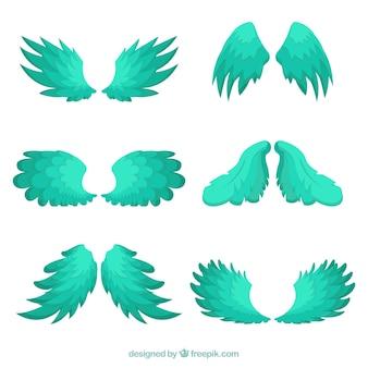 緑の羽の素晴らしいセット